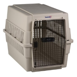 Where to rent KENNEL,DOG LARGE in South St. Paul MN